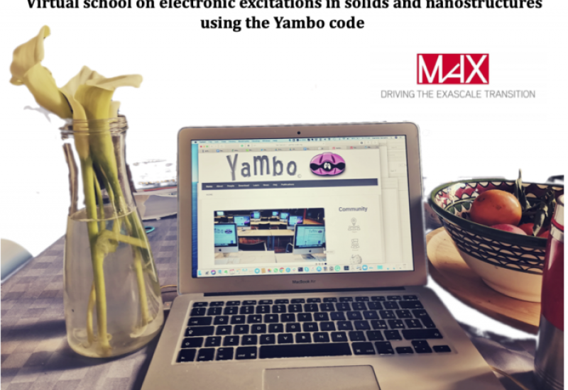 Virtual school on electronic excitations in solids and nanostructures using the Yambo code